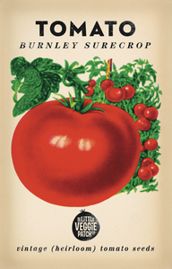 The Little Veggie Patch Co. Burnley Surecrop Tomato Seeds