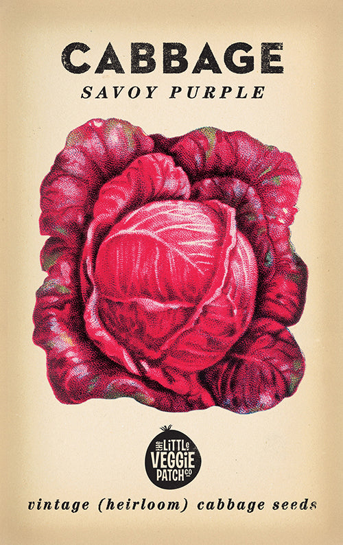 The Little Veggie Patch Co. Savoy Purple Cabbage Seeds