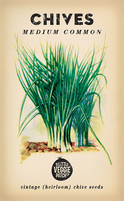 The Little Veggie Patch Co. Medium Common Chive Seeds
