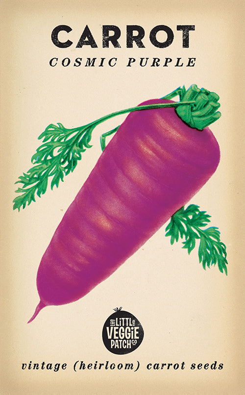 The Little Veggie Patch Co. Cosmic Purple Carrot Seeds