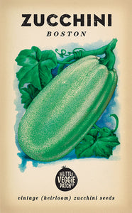 The Little Veggie Patch Co. Boston Zucchini Seeds