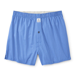 Peter Millar Backyard Performance Boxer in Blue River