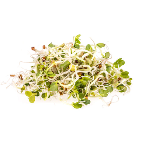 Sprouts - Alfalfa & Herbs