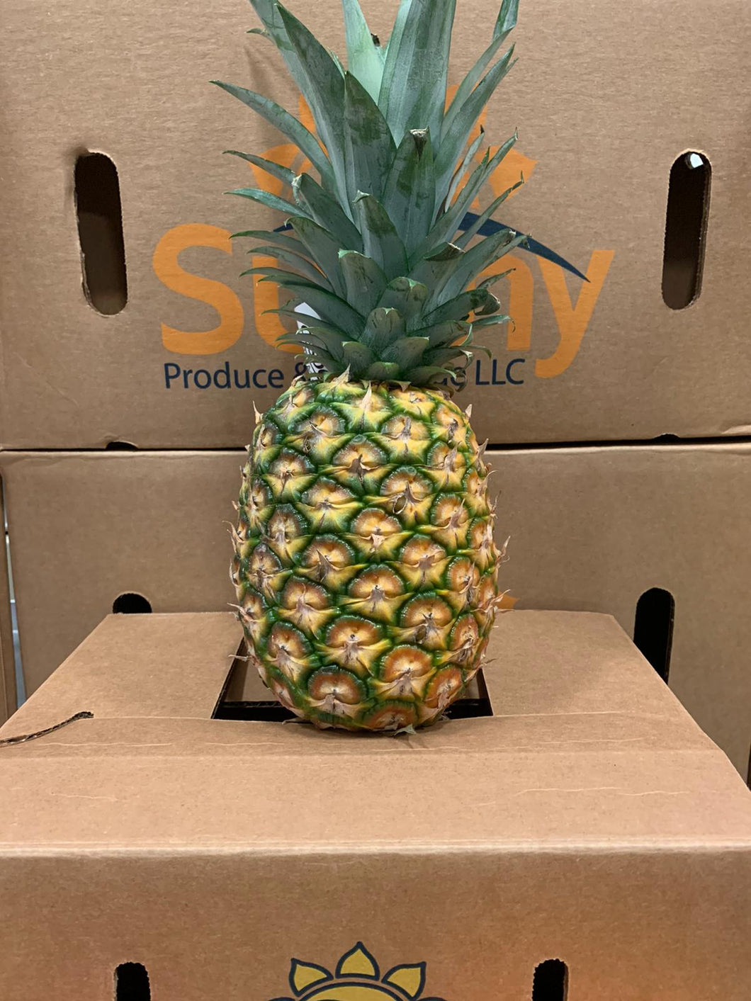 Pineapple Add On
