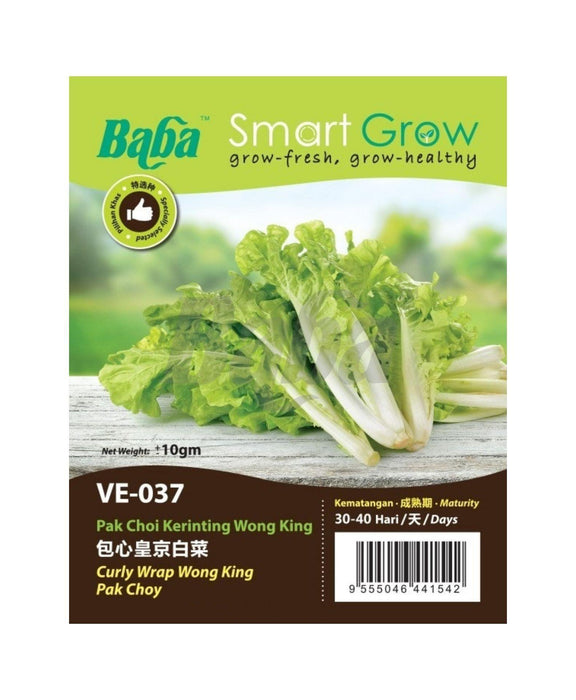 Baba Smart Grow Seed: VE-037 Curly Wrap Wong King Pak Choy