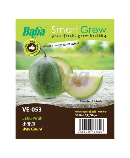 Baba Smart Grow Seed: VE-053 Wax Gourd-Seeds-Baba E Shop