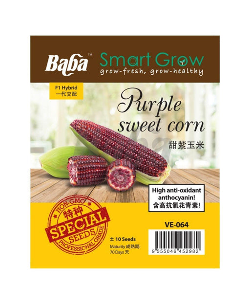 Baba Smart Grow Seed: VE-064 F1 Purple Sweet Corn-Seeds-Baba E Shop