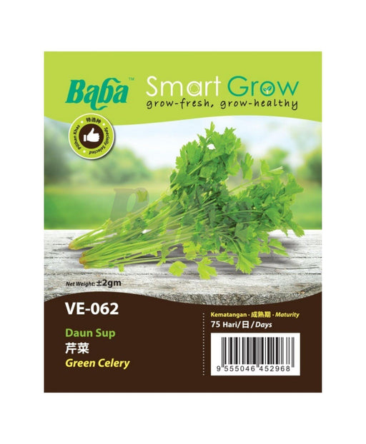 Baba Smart Grow Seed: VE-062 Green Celery-Seeds-Baba E Shop