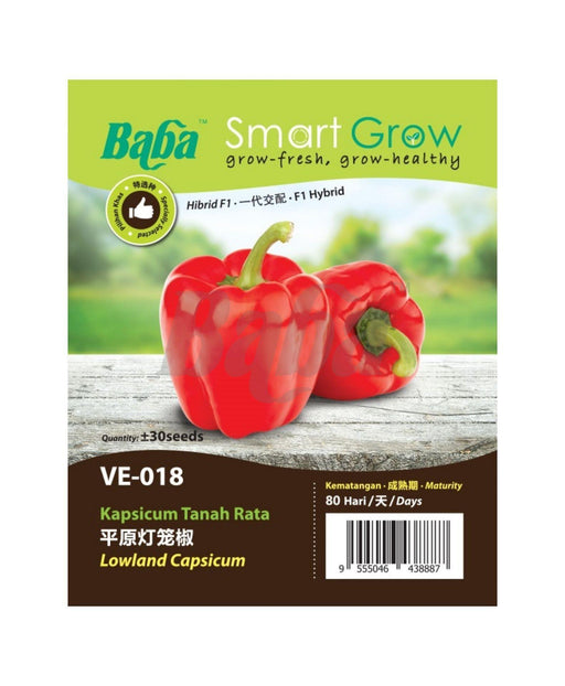 Baba Smart Grow Seed: VE-018 Lowland Capsicum-Seeds-Baba E Shop