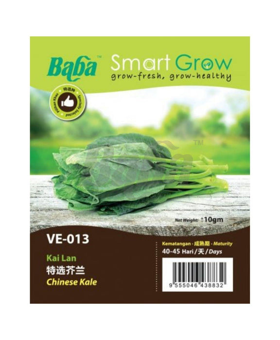 Baba Smart Grow Seed: VE-013 Chinese Kale
