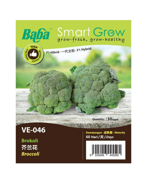 Baba Smart Grow Seed: VE-046 F1 Broccoli-Seeds-Baba E Shop