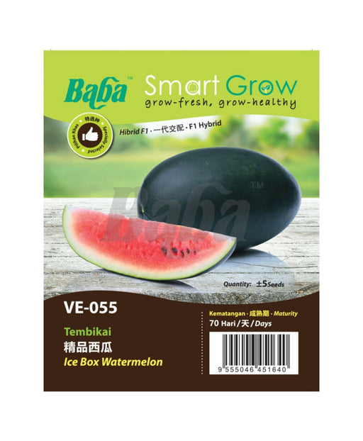 Baba Smart Grow Seed: VE-055 Ice Box Watermelon-Seeds-Baba E Shop