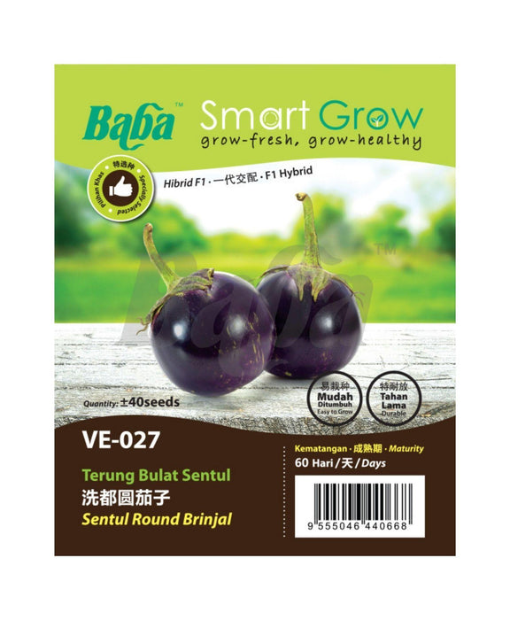 Baba Smart Grow Seed: VE-027 F1 Sentul Round Brinjal