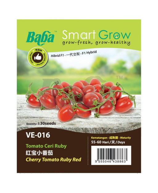 Baba Smart Grow Seed: VE-016 F1 Cherry Tomato Ruby Red-Seeds-Baba E Shop