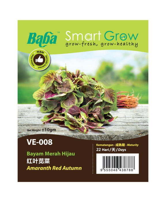 Baba Smart Grow Seed: VE-008 Amaranth Red Autumn