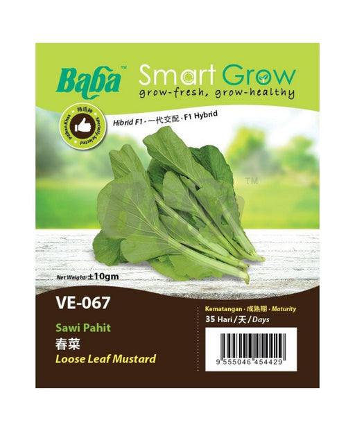 Baba Smart Grow Seed: VE-067 Loose Leaf Mustard-Seeds-Baba E Shop