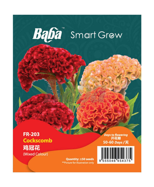 Baba Smart Grow Seed: FR-003 Cockscomb-Seeds-Baba E Shop