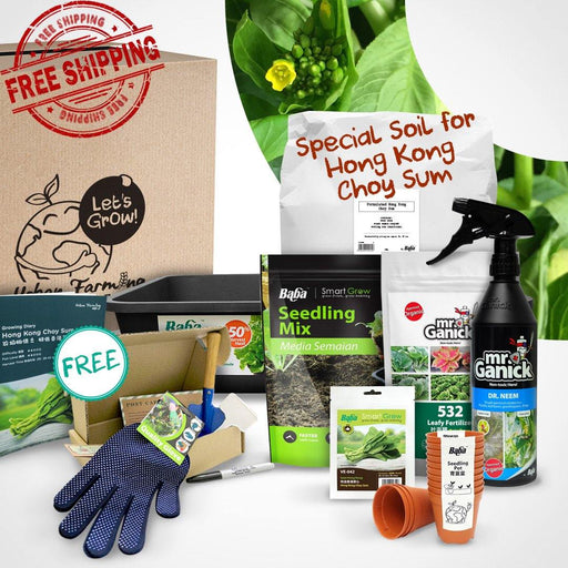 Urban Farming Package - Leafy Vegetables-Vegetable Garden-Baba E Shop