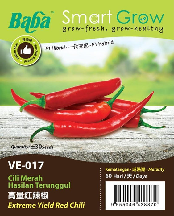 Melon & Beans Home Package - VE-017 F1 Extreme Yield Red Chili-Vegetable Garden-Baba E Shop
