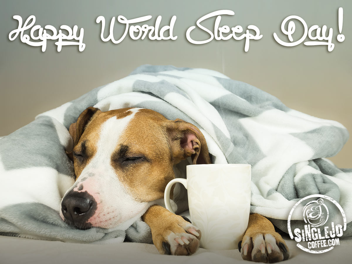World Sleep Day!