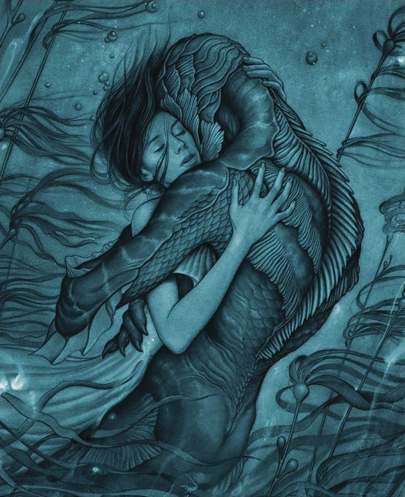 ART AND MAKING OF THE SHAPE OF WATER HC
