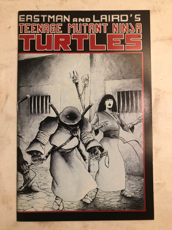 TEENAGE MUTANT NINJA TURTLES (1988) #17
