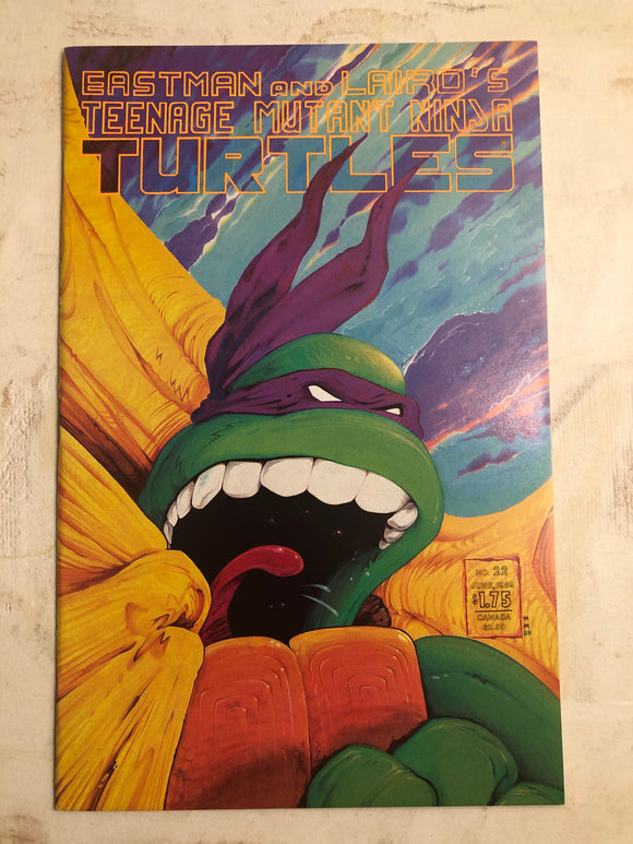 TEENAGE MUTANT NINJA TURTLES (1989) #22