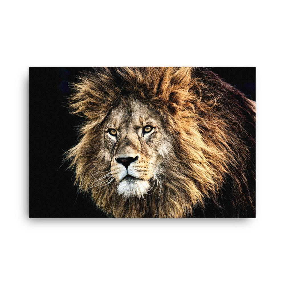 King Of The Jungle Canvas Art Print - Artouchmedia
