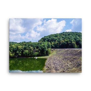 Forest Between Earth Lake And Sky Canvas Art Print