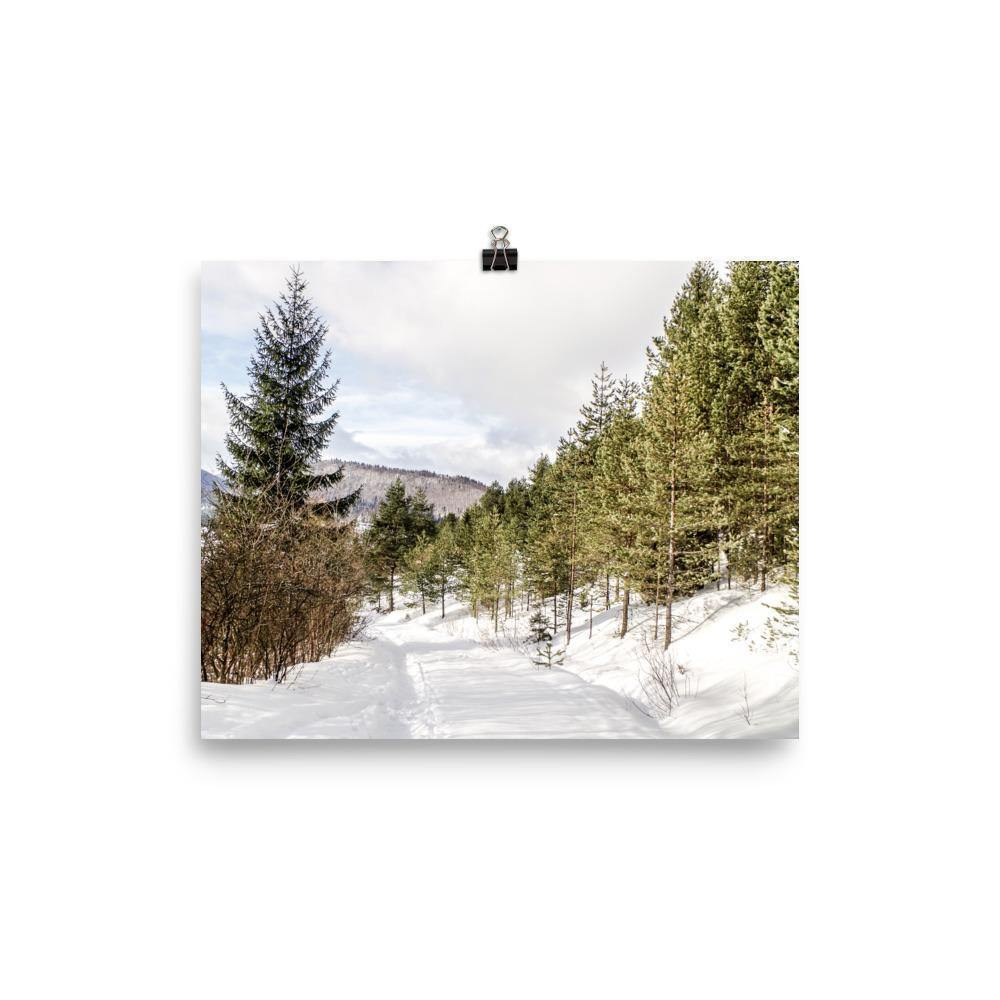 Sunny Winter Walk Luster Art Print - Artouchmedia