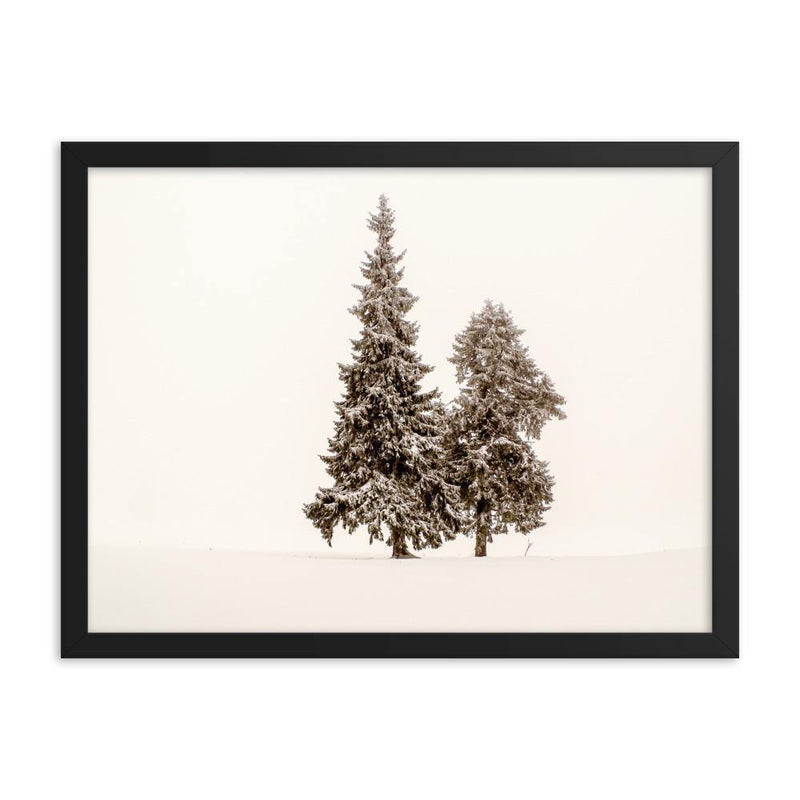 Two Trees Framed Art Print - Artouchmedia