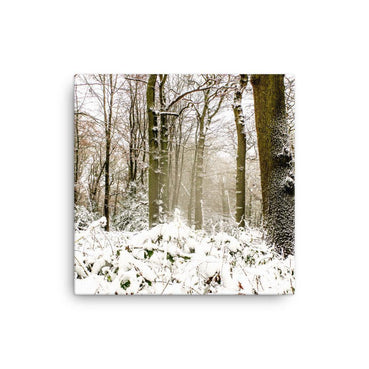 Beacon Hill Forest Canvas Art Print - Artouchmedia