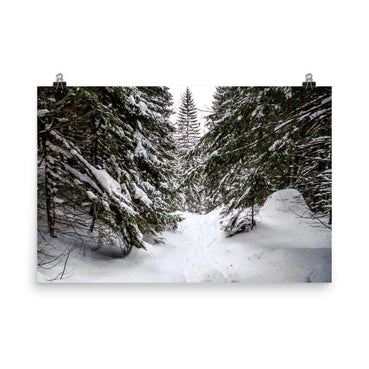 Forest Full Of Snow Luster Art Print - Artouchmedia