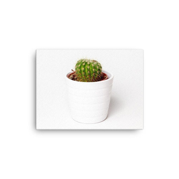 Single Cactus In The White Pot Canvas Art Print - Artouchmedia