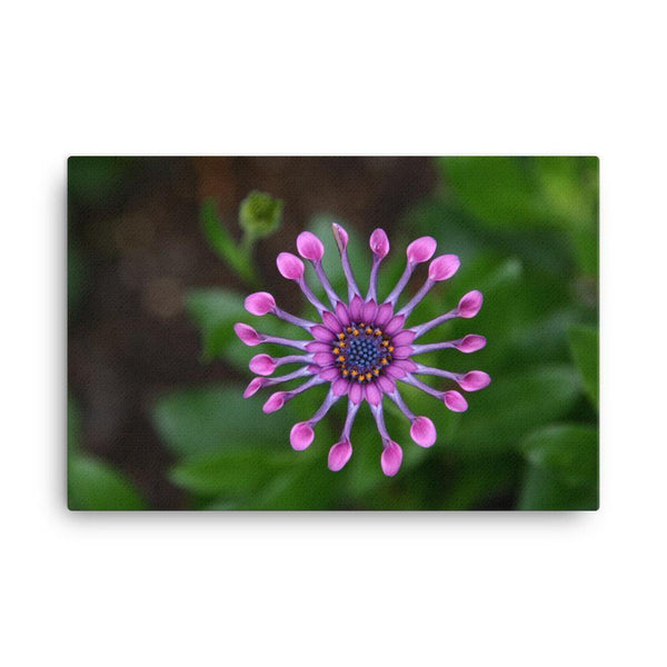 Purple Flower Canvas Art Print - Artouchmedia