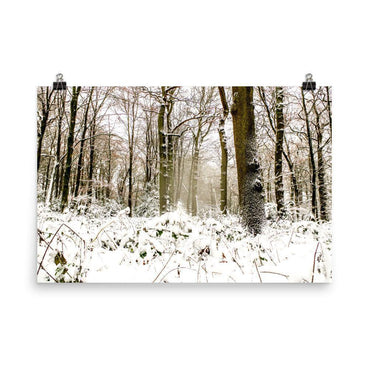 Beacon Hill Forest Luster Art Print - Artouchmedia