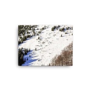 Slope On The Hill Canvas Art Print - Artouchmedia