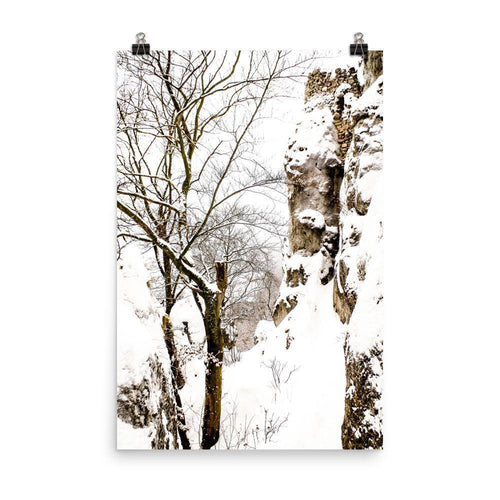 Ruined Side Of Sulov Castle Luster Art Print - Artouchmedia