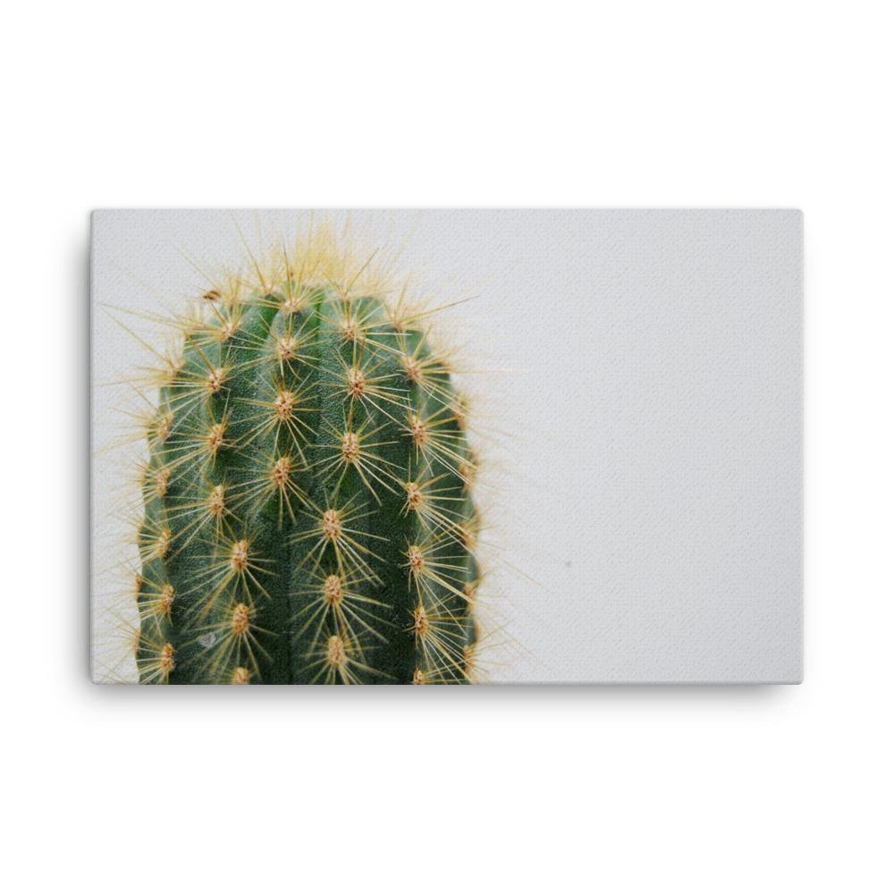 Huge Cactus Canvas Art Print - Artouchmedia