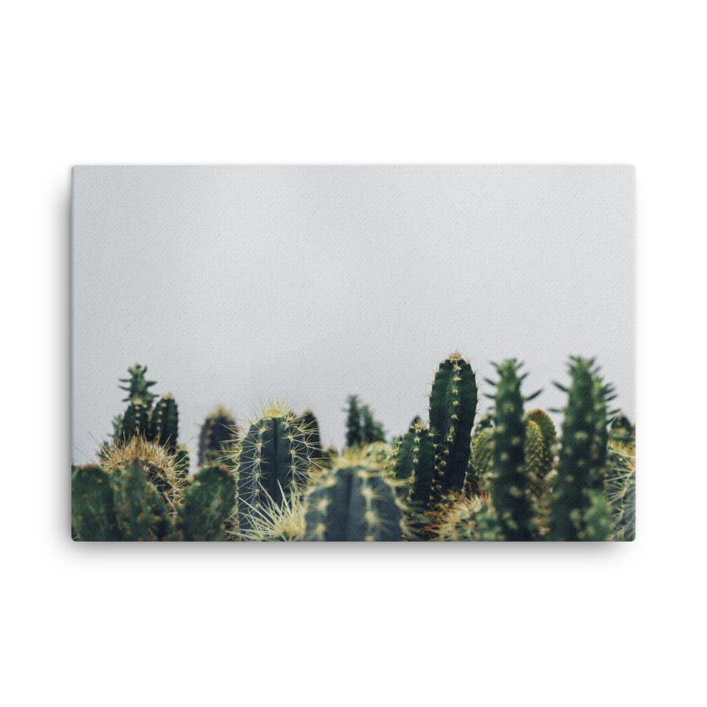 First Cactus Is Winning Canvas Art Print - Artouchmedia