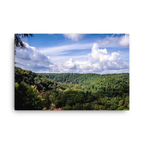 Fire Post View Of Mohican State Park Canvas Art Print - Artouchmedia