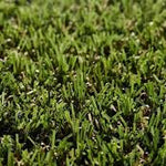CFS Lavish Lawns Artificial Grass - Spring - C2B Trade Store