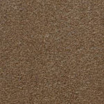 CFS Easy Living Carpet Biscuit