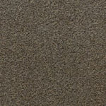 CFS Easy Living Carpet Mink - C2B Trade Store