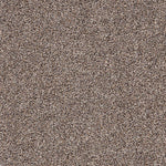 CFS Hampton Bays Carpet Rock Yale