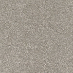 CFS Silk Harmony Carpet Oyster White - C2B Trade Store
