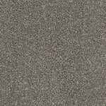 CFS Silk Harmony Carpet Soft Taupe - C2B Trade Store