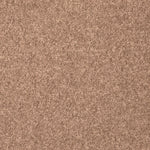 CFS Stainsafe Shepherd Twist Pale Umber - C2B Trade Store