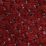 CFS Varsity Collection Carpet Cherry