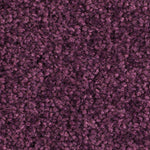 Compilation Plus Violet Carpet Tile (price per 4m2 box) - C2B Trade Store